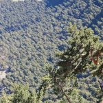 Valle de La Barranca - Senda Ortiz