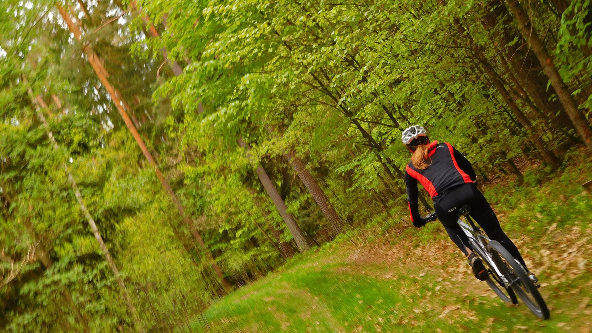 MTB Erlangen - Dechsendorf Forest