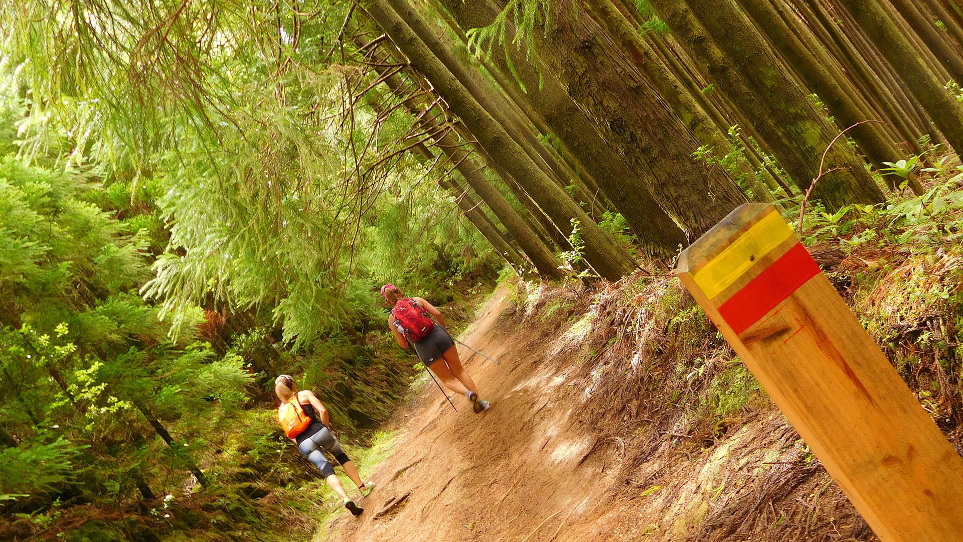 Caminada Azores - Pico da Vara