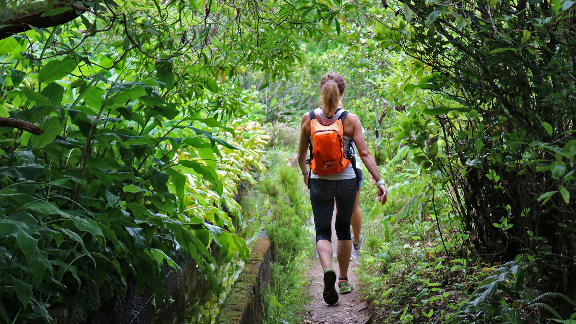 Caminada Açores - Lagoa de Fogo