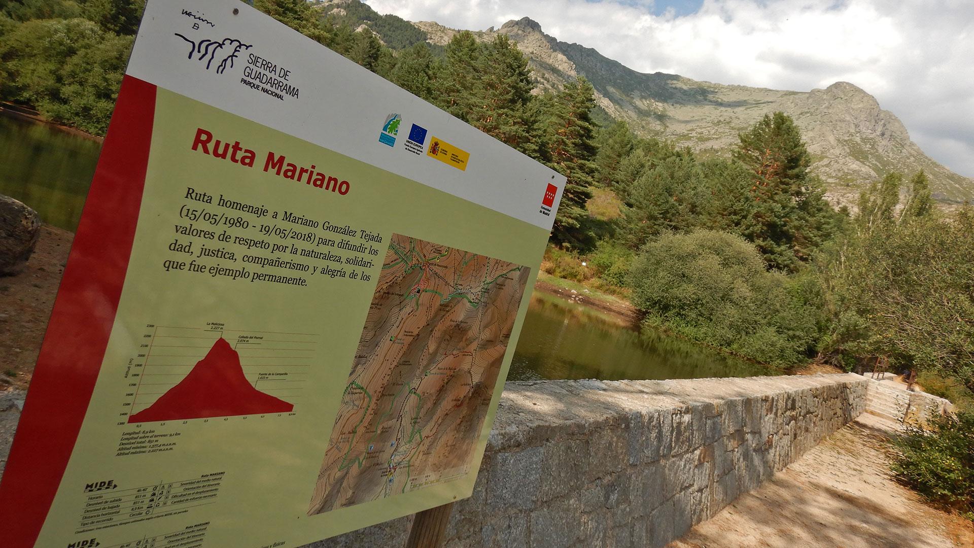 Ruta Mariano - Maliciosa