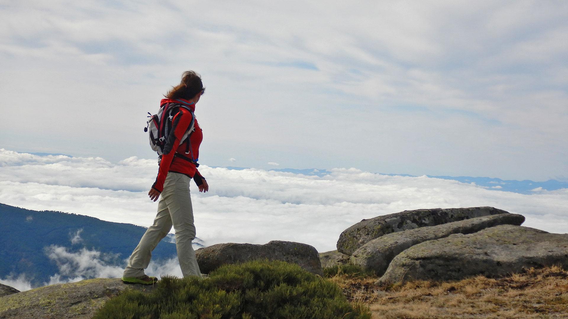 Sierra de Gredos. El Torozo