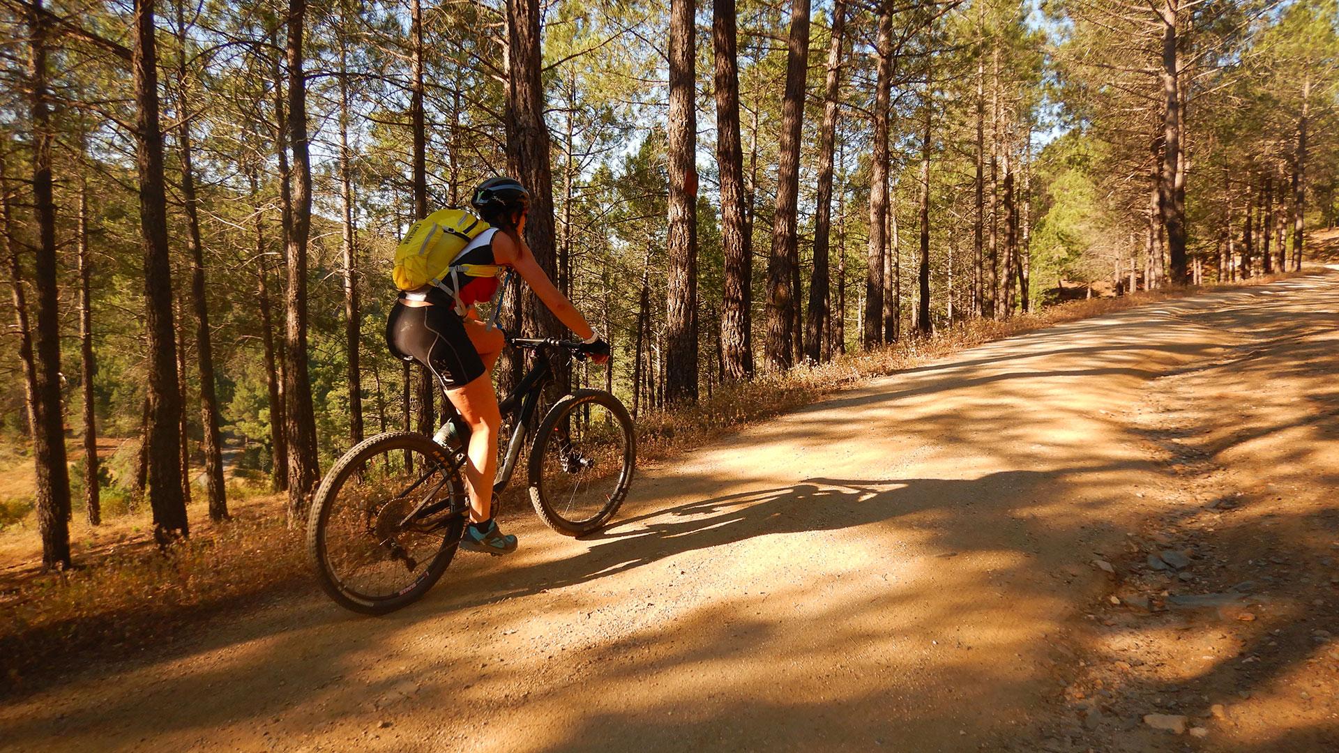 Entre el Atazar y la Sierra del Rincón