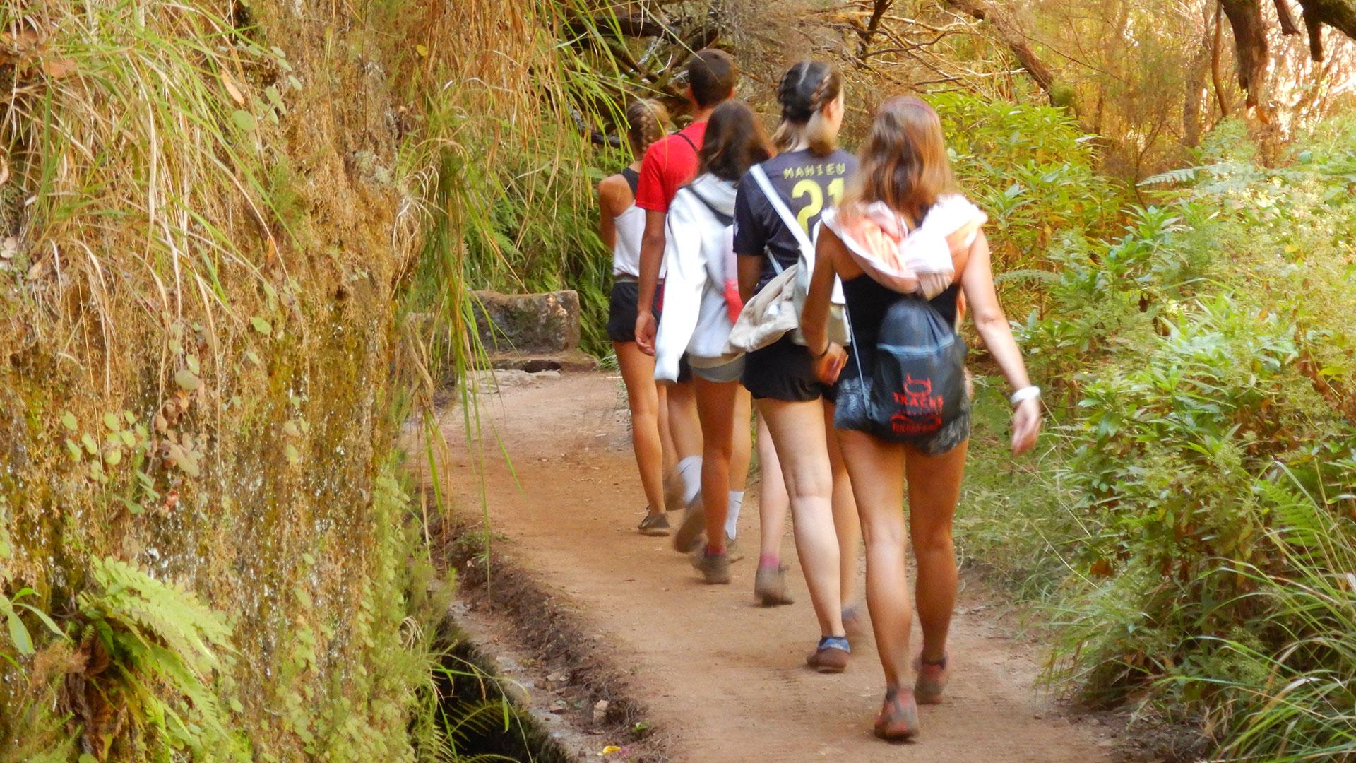 Madeira-Levada do Risco PR6-1 - Levada Fontes PR6