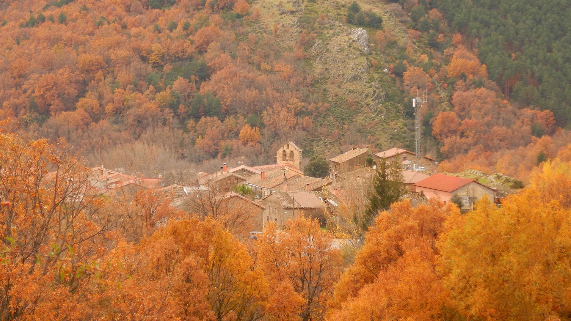 Hayedo de Montejo - Pico Santuy