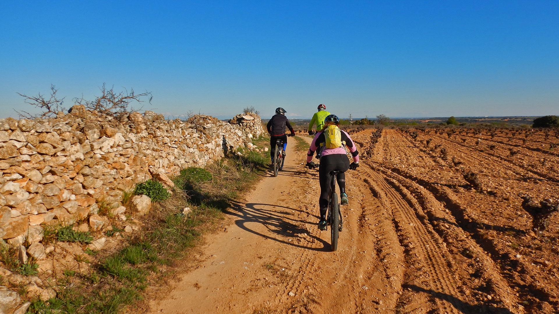Villarejo y Belmonte - Senda Pinos y Barranco Infierno